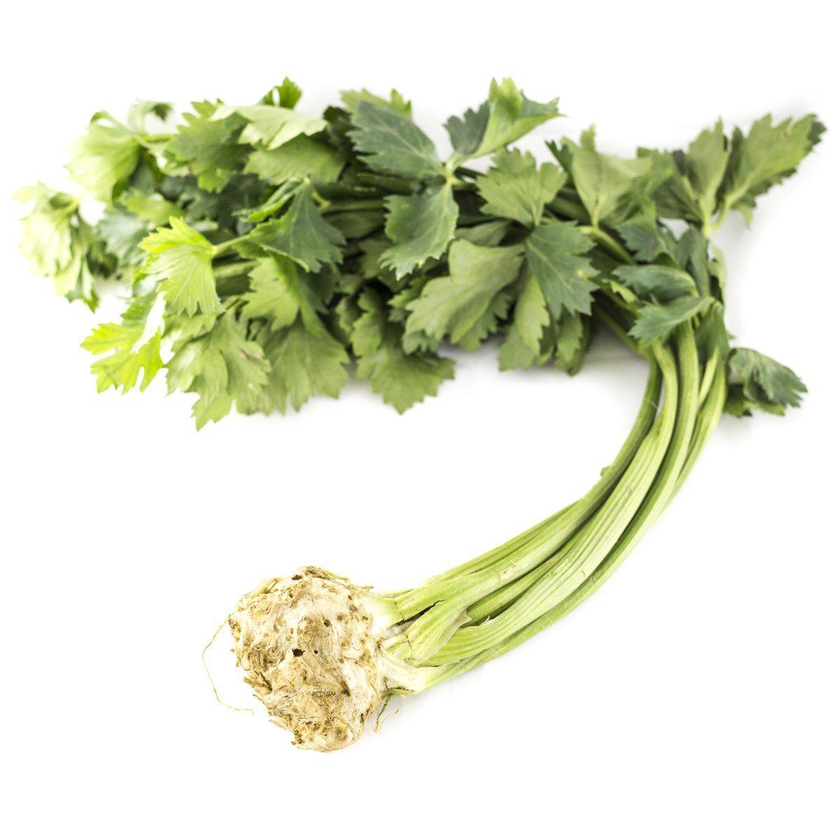Celer koren (1kom)
