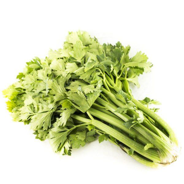 Celer stabljika